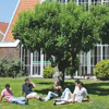 Students in park